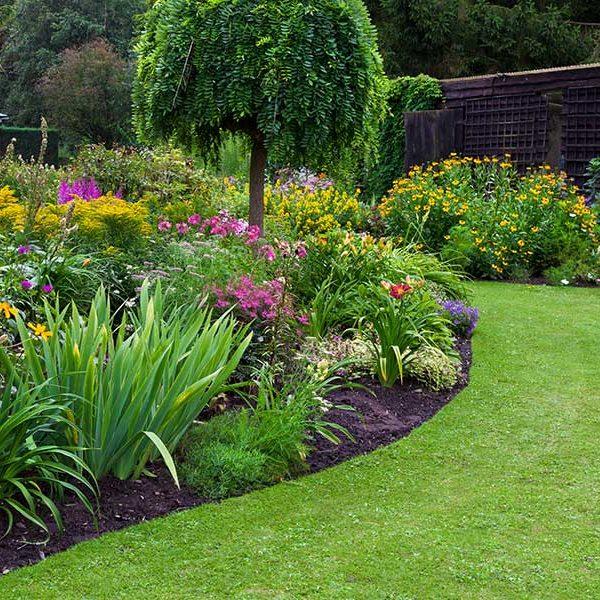 Arcadie paysagiste entretien parcs et jardins montceau for Contrat type entretien espaces verts