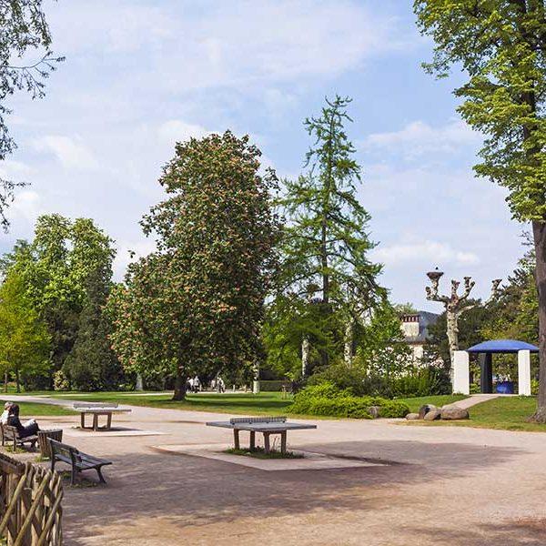 Arcadie paysagiste entretien parcs et jardins montceau for Entretien jardin 71